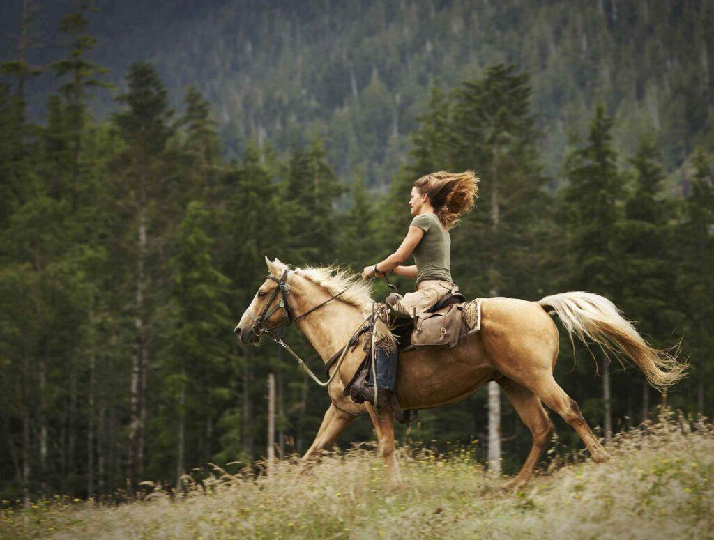 Horseback Riding hobby