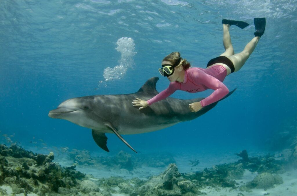 Snorkeling as a hobby